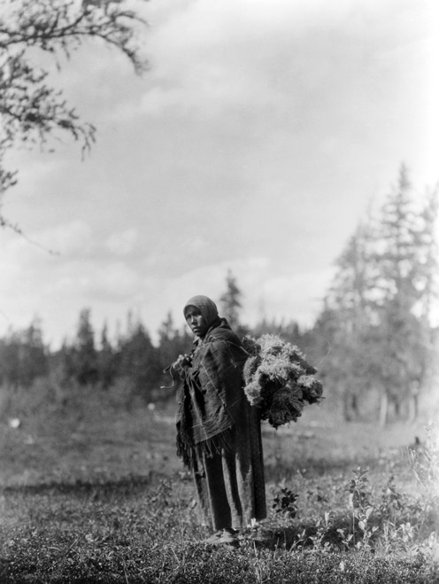 Cree Woman, C1927. /Na Cree Native American Woman Carrying A Bundle Of Moss. Photograph By Edward Curtis, C1927. Poster Print by Granger Collection - Item # VARGRC0114390
