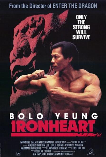 Ironheart Movie Poster (11 x 17) - Item # MOV211691