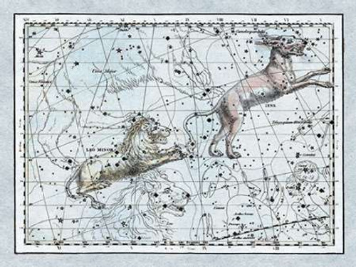 Maps of the Heavens: Leo Minor Poster Print by Alexander Jamieson - Item # VARPDX450144