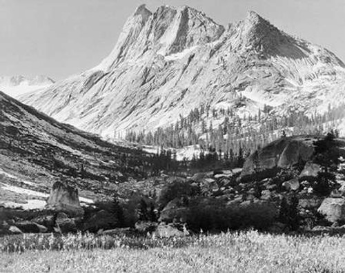 Boaring River, Kings Region, Kings River Canyon, proVintageed as a national park, California, 1936 Poster Print by Ansel Adams - Item # VARPDX460814