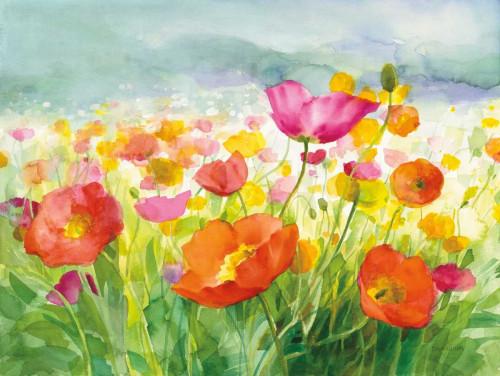 Meadow Poppies Poster Print by Danhui Nai - Item # VARPDX34345
