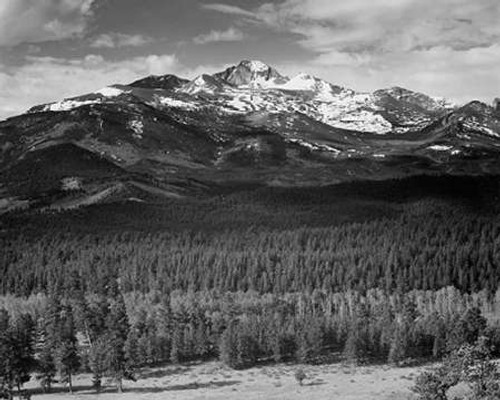 Trees in foreground, snow covered mountain in background, in Rocky Mountain National Park, Colorado, Poster Print by Ansel Adams - Item # VARPDX460960