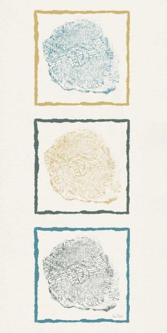 Stump Triptych I Poster Print by Ramona Murdock - Item # VARPDXRM1942