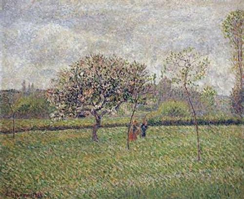 Apple Tree Blossom at Eragny Poster Print by Camille Pissarro - Item # VARPDX265359