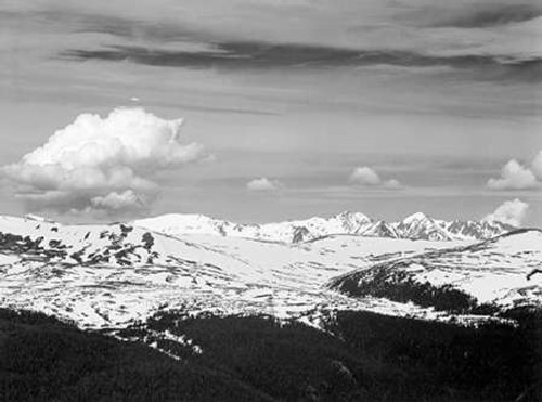 View at timberline, dark foreground, light snow capped mountain, gray sky, in Rocky Mountain Nationa Poster Print by Ansel Adams - Item # VARPDX460951