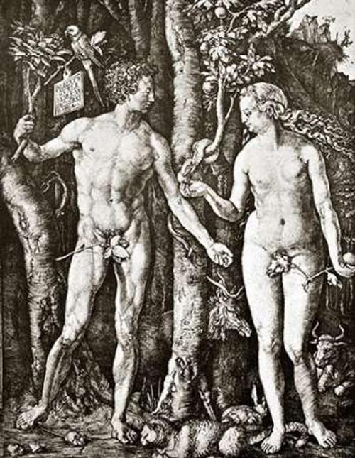 Adam And Eve Poster Print by Albrecht Durer - Item # VARPDX372768