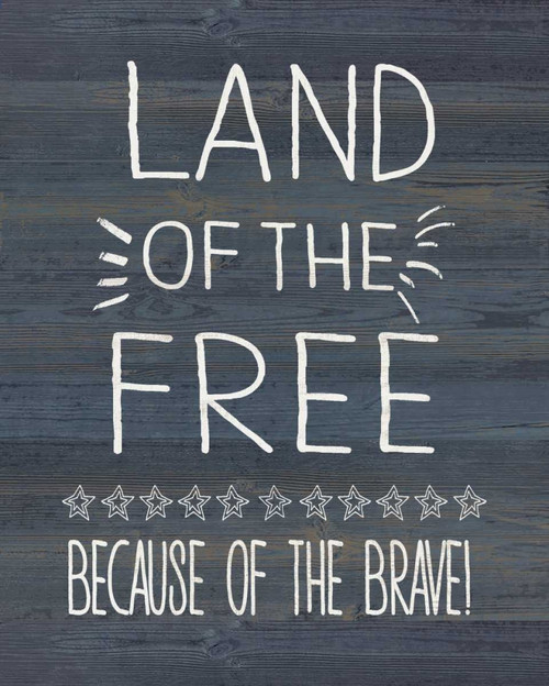 Land of the Free and Brave Poster Print by Jo Moulton - Item # VARPDXJM15489