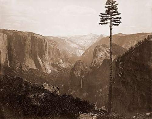 Yosemite Valley from the Best General View, 1866 Poster Print by Carleton Watkins - Item # VARPDX455357