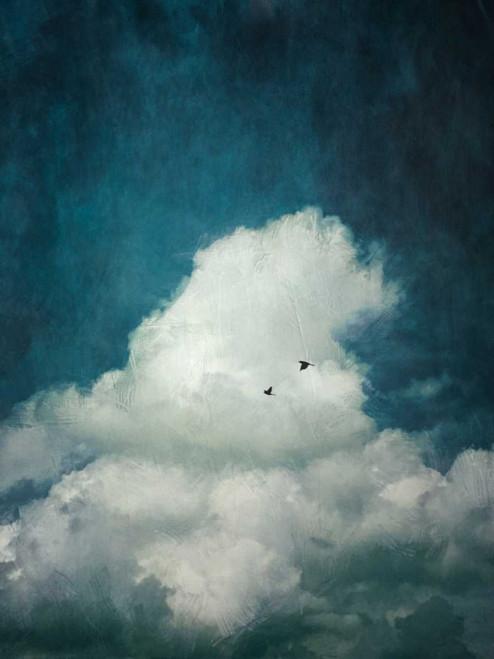 The Cloud Poster Print by Dirk Wuestenhagen - Item # VARPDXW897D