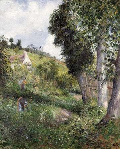 Landscape With Cabbage Near Pontoise Poster Print by Camille Pissarro - Item # VARPDX267022