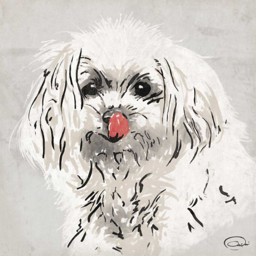 Wet Nose Poster Print by OnRei OnRei # ONSQ043A
