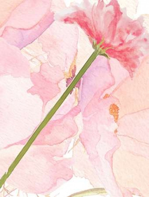 Sympathy Flower Poster Print by  Kimberly Allen - Item # VARPDXKARC092A
