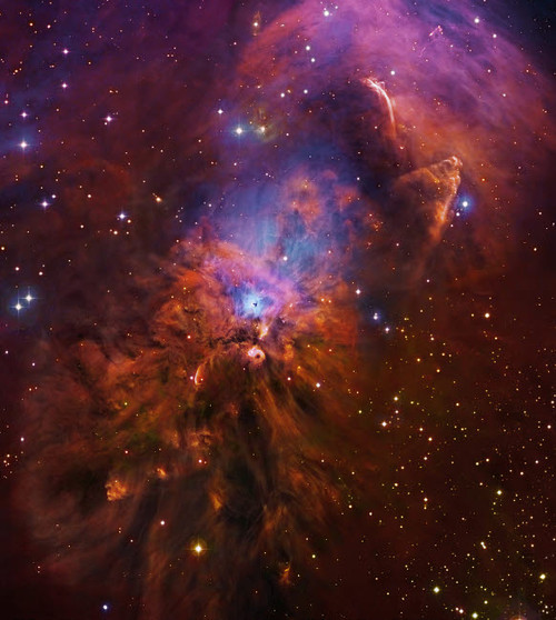 NGC 1999, bright reflection nebula in Orion Poster Print by Robert Gendler/Stocktrek Images - Item # VARPSTGEN100159S