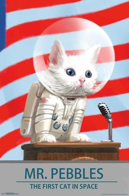 Fallout 4 - Mr. Pebbles Poster Print - Item # VARTIARP16072