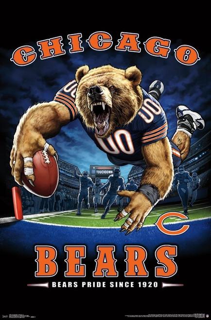 Chicago Bears - End Zone Poster Print - Item # VARTIARP15974