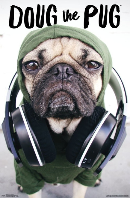 Dug the Pug - Headphones Poster Print - Item # VARTIARP15854