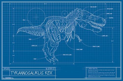 T-Rex - Blueprint Illustration Poster Print - Item # VARTIARP15794
