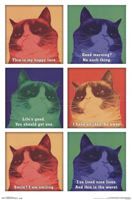 Grumpy Cat - Cattitude Poster Print - Item # VARTIARP13217