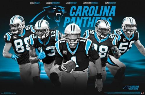 Carolina Panthers - Team 16 Poster Print - Item # VARTIARP14977