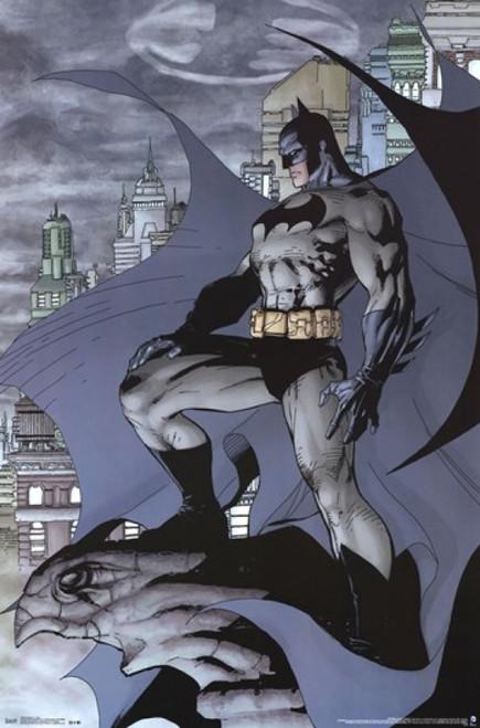 Batman - Cape Poster Print - Item # VARTIARP13543
