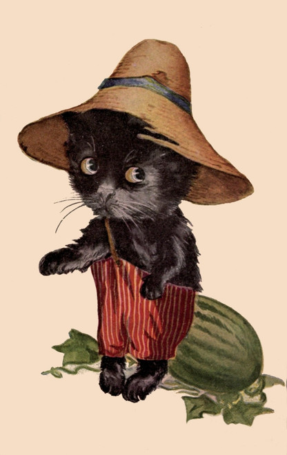 Uncle Milton Three little kittens 1908 Kitten with hat Poster Print by Uncle Milton - Item # VARPPHPDA61886