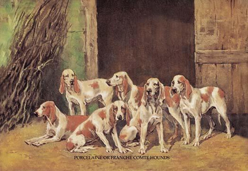 A pack of six dogs stand in front of open barn doors. Poster Print by Baron Karl Reille - Item # VARBLL0587047453