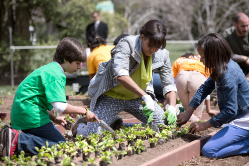 White House Kitchen Garden Spring Planting With Michelle Obama And School Children. South Lawn History - Item # VAREVCHISL040EC191