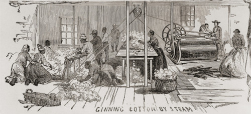 Ginning Cotton By Steam Powered Gin In 1861. U.S. Cotton Production Supplied The Textile Mills Of The U.S. North And Britain History - Item # VAREVCHISL010EC012
