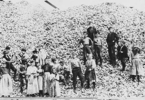 Children Workers Husking Oysters History - Item # VAREVCHBDCHLACS003