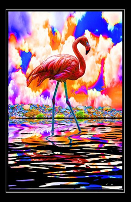 Flamingo Poster Print - Item # VARSCOBLP1993
