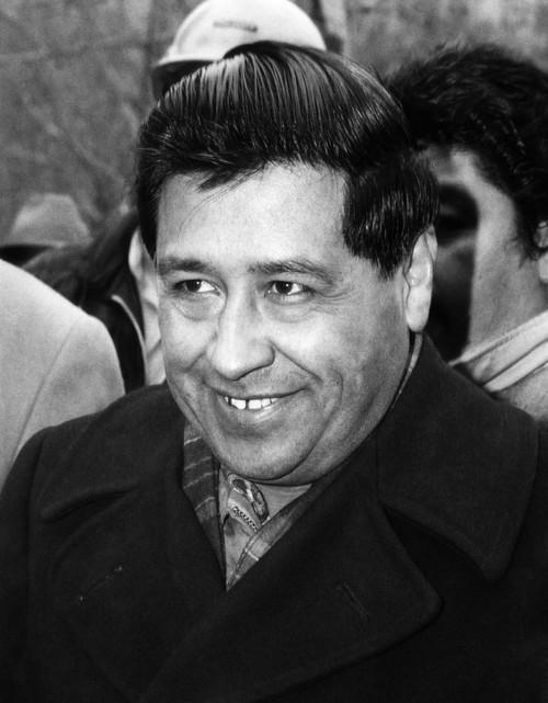 Cesar Chavez History - Item # VAREVCHBDCECHCS005