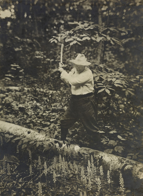President Theodore Roosevelt Chopping History - Item # VAREVCHISL044EC979