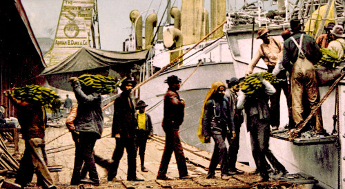 Bananas Being Unloaded At The Port Of Mobile History - Item # VAREVCS4DFOODEC001