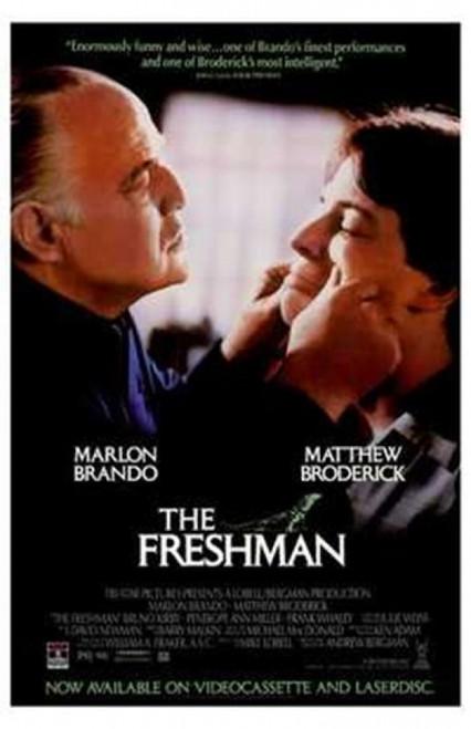 The Freshman Movie Poster (11 x 17) - Item # MOV210596