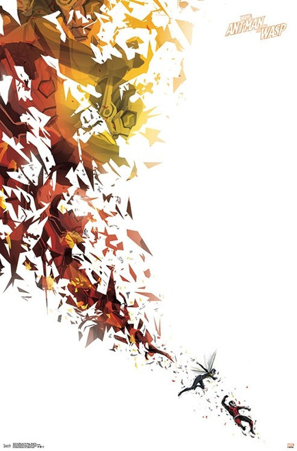 Ant-Man and The Wasp - Simplistic Poster Print - Item # VARTIARP15244