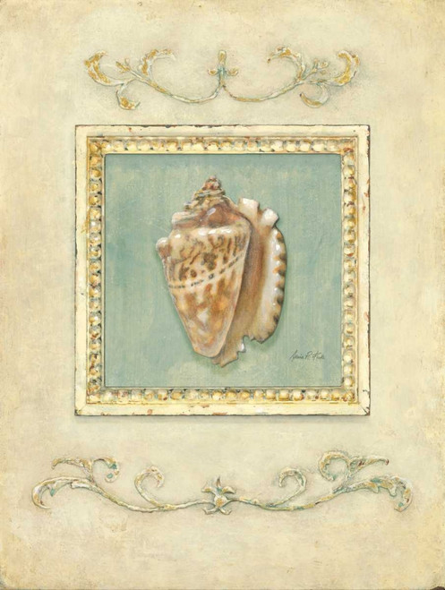 Classic Conch Poster Print by Arnie Fisk - Item # VARPDX011FIS1068