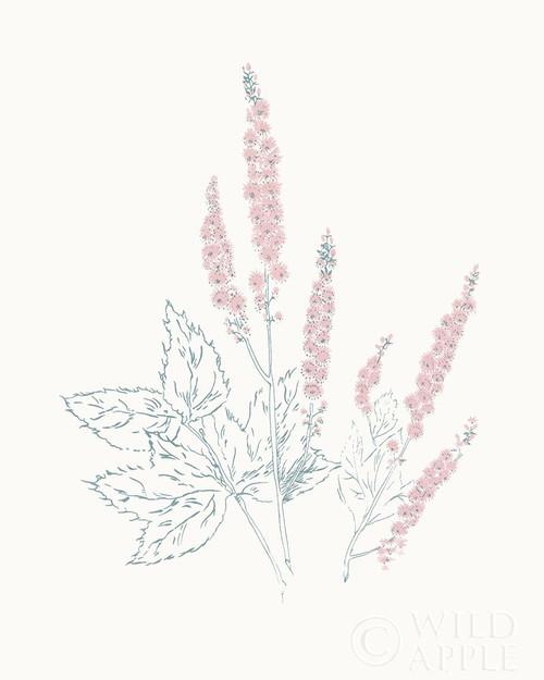 Flowers on White VII Contemporary Poster Print by Wild Apple Portfolio - Item # VARPDX44428