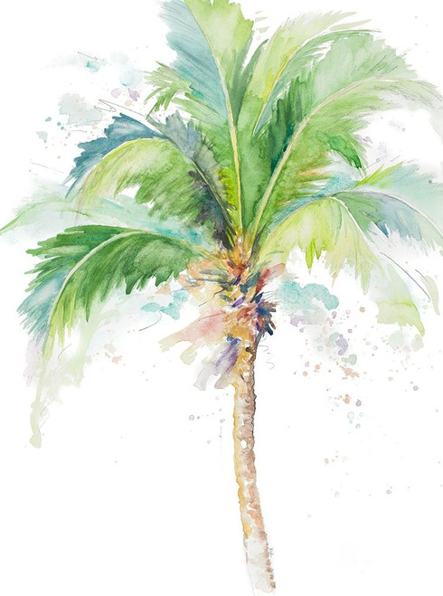 Watercolor Coconut Palm Poster Print by Patricia Pinto - Item # VARPDX12447