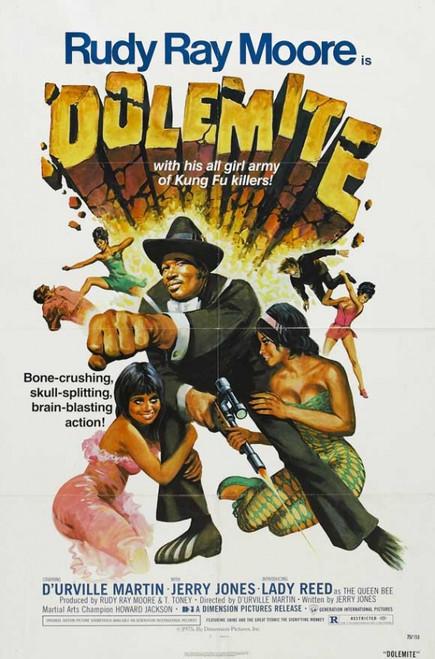 Dolemite Movie Poster Print (27 x 40) - Item # MOVEI0685