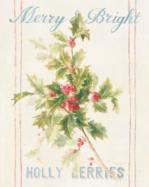 Floursack Holiday I Poster Print by Danhui Nai - Item # VARPDX42987