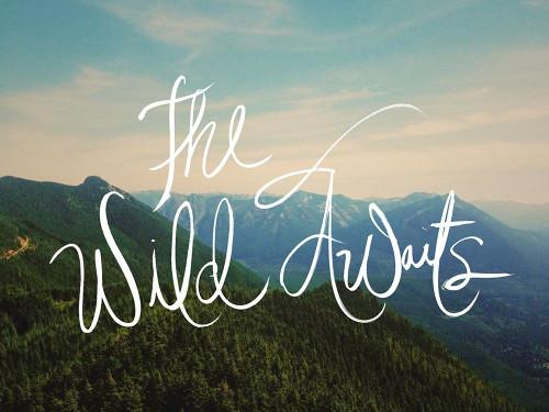 The Wild Awaits Poster Print by Kali Wilson - Item # VARPDX12731P