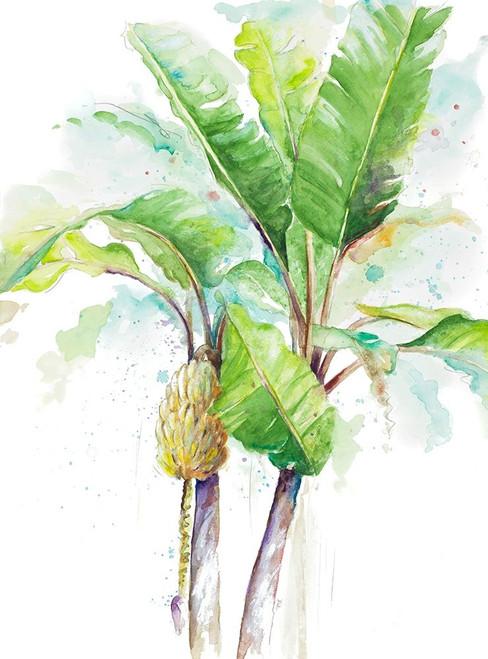 Watercolor Banana Plantain Poster Print by Patricia Pinto - Item # VARPDX12446