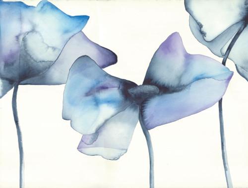 Blue Poppy I Poster Print by Cathy Hendrick - Item # VARPDXCT009A