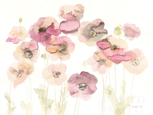 Delicate Poppies Poster Print by Danhui Nai - Item # VARPDX38230