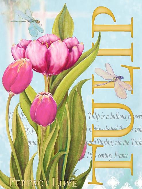 Elegant Tulip II Poster Print by Diannart - Item # VARPDX13061