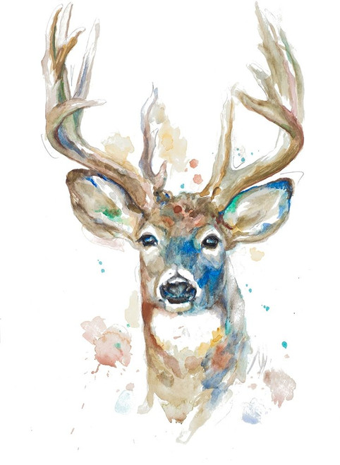 Deer Facing Front Poster Print by Patricia Pinto - Item # VARPDX12906