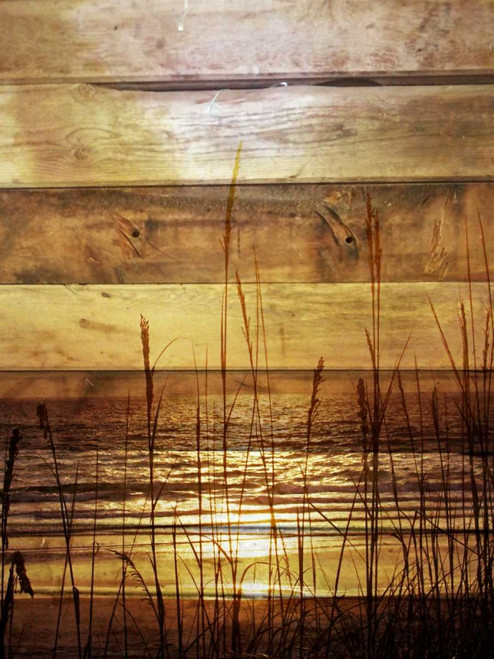 By The Grass Sunset Wood Poster Print by Gail Peck - Item # VARPDX12384