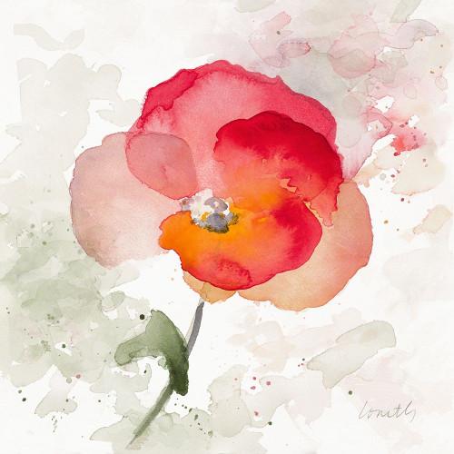 Translucent Poppy I Poster Print by Lanie Loreth - Item # VARPDX12334