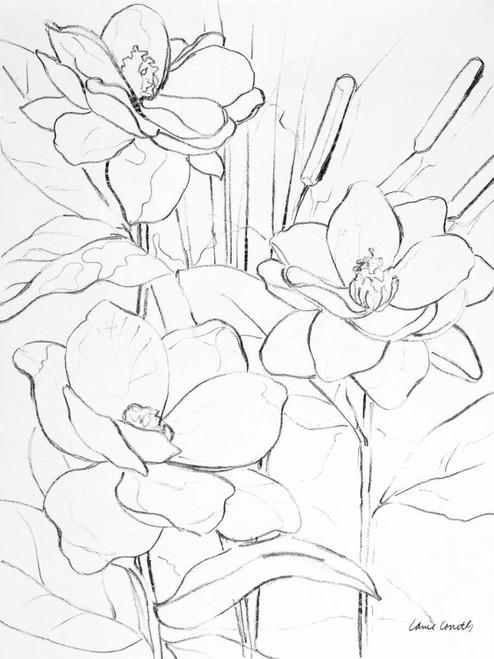 Floral Sketch II Poster Print by Lanie Loreth - Item # VARPDX10846