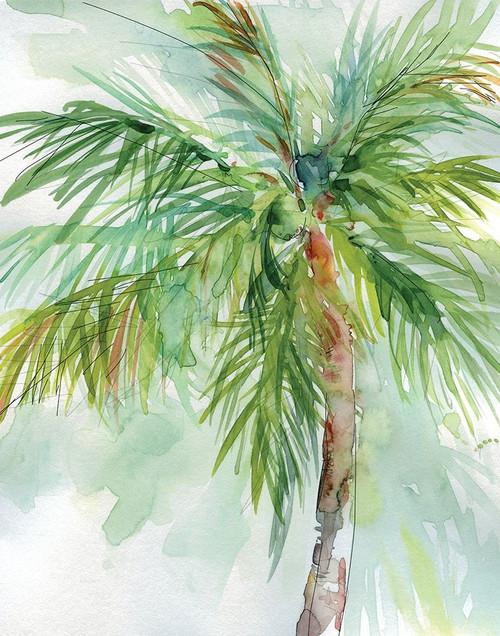 Palm Breezes II Poster Print by Carol Robinson - Item # VARPDX19791
